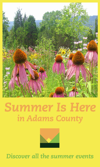 SIDEBAR AD Summer Is Here