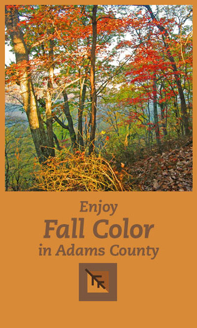 SIDEBAR AD Fall Color
