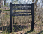 Brush Creek State Forest