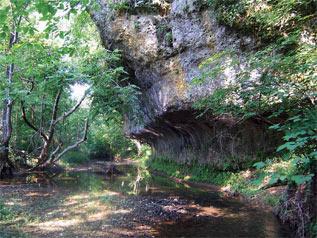 Shoemaker State Nature Preserve