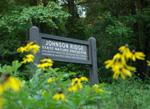 Johnson Ridge