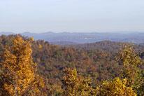 Shawnee State Forest